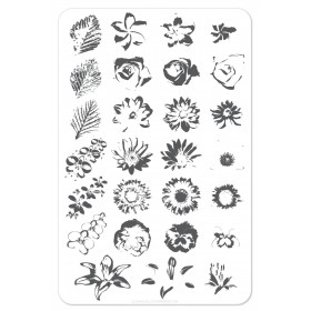 Пластина для стемпинга Clear Jelly Stamper - Full On Floral