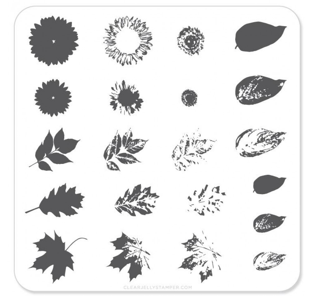 Clear Jelly Stamper - Sunflower and Leaves