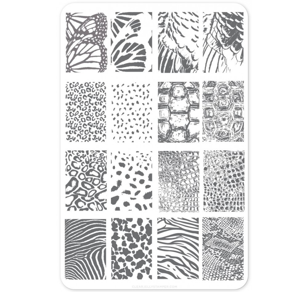 Clear Jelly Stamper - Texture Essentials - Wild Kingdom