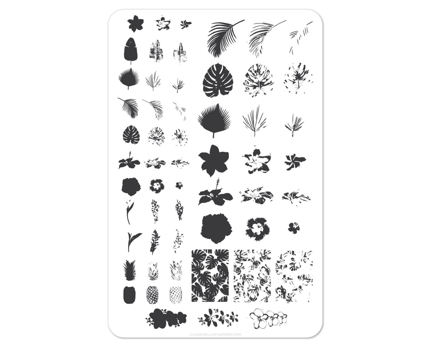 Clear Jelly Stamper - Tropical