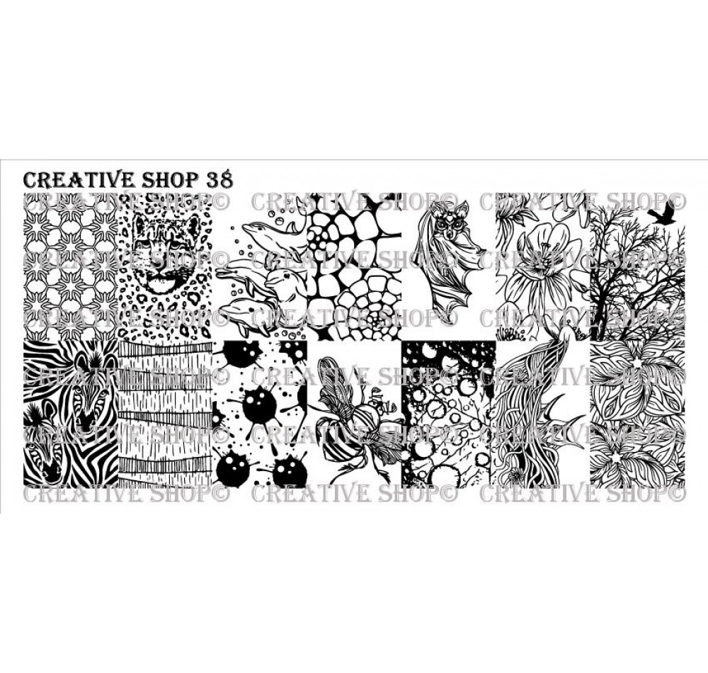 Creative Shop 38