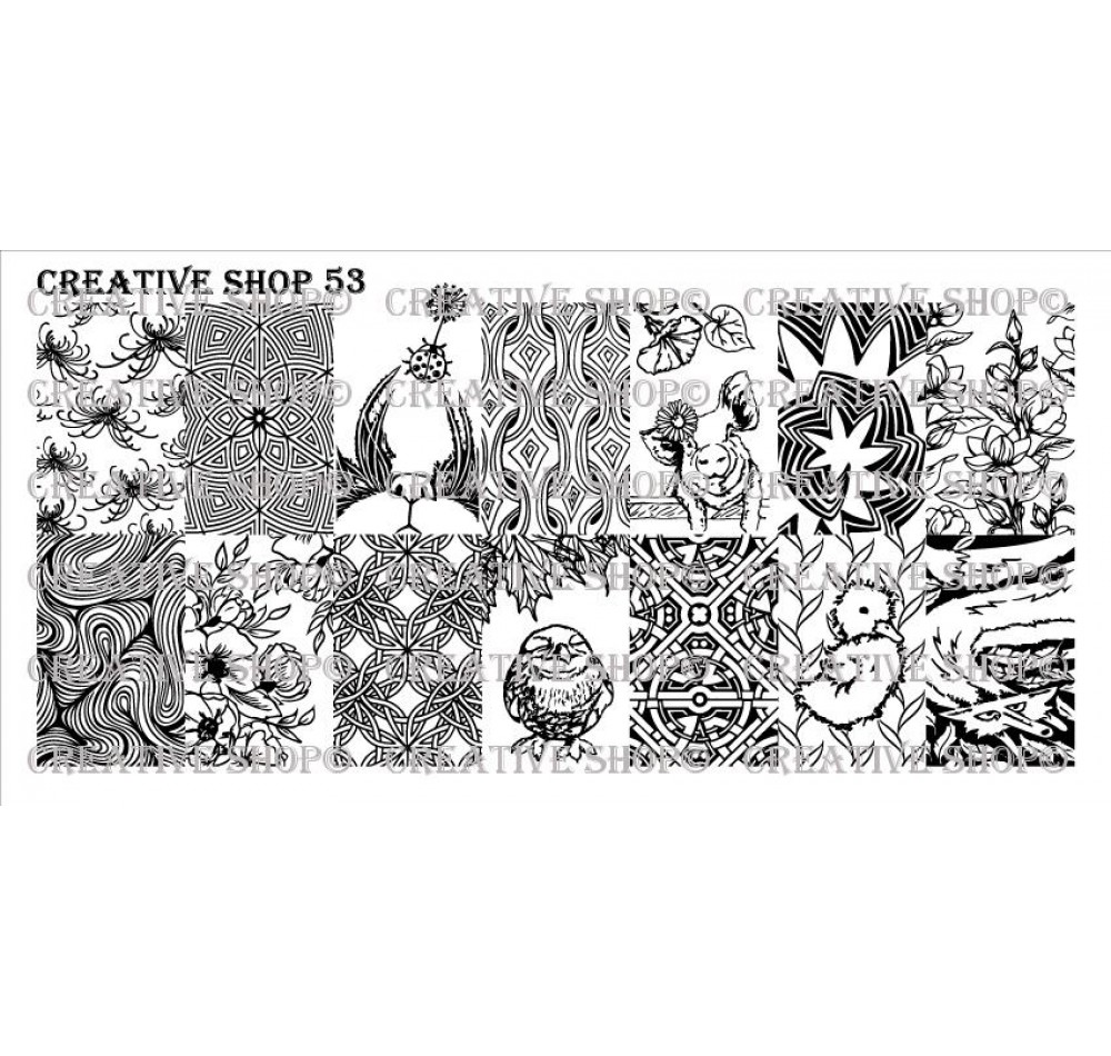 Creative Shop 53
