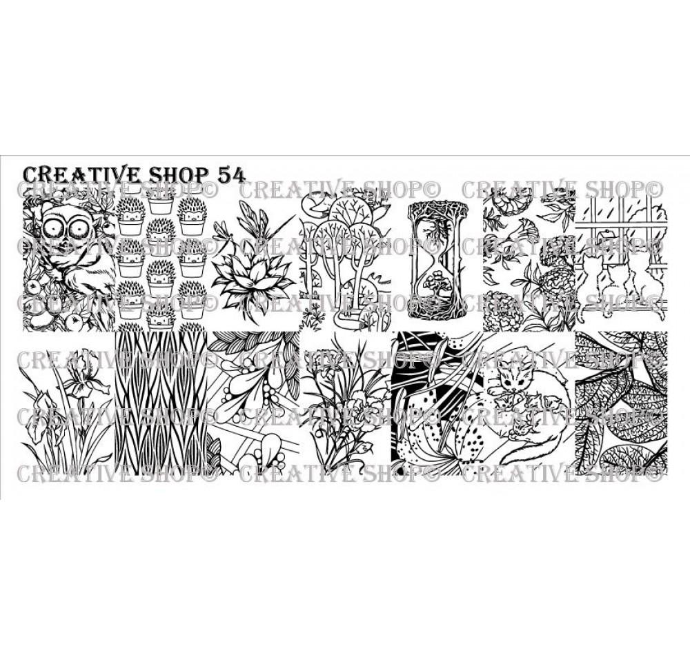 Creative Shop 54