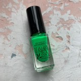 Лак для стемпинга TAKIDA N05 зеленый неон, 5мл